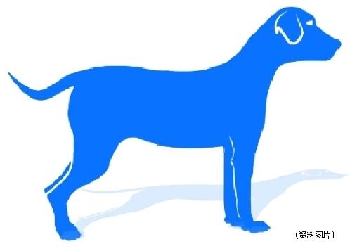 伤口被动物舔了也要注射狂犬病疫苗 哪里可以注射