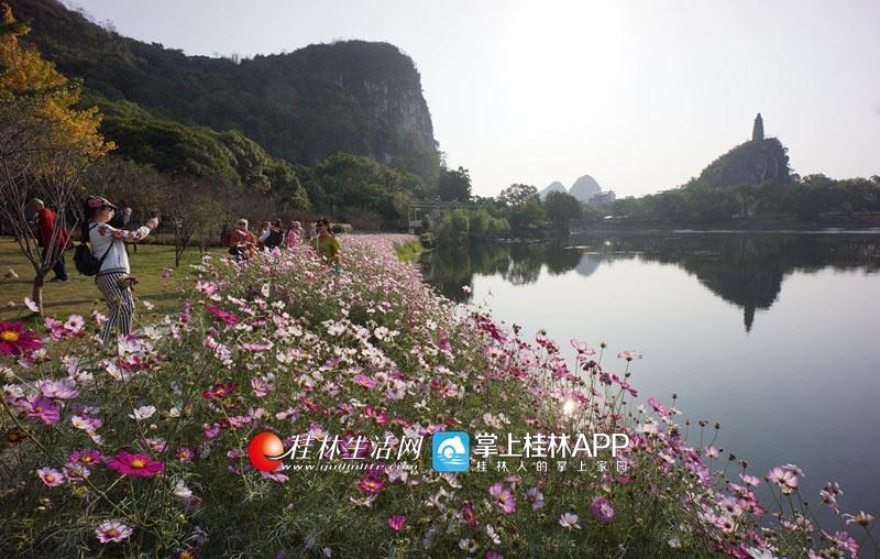 岸边各色鲜花盛开,与倒映在小东江里的塔山清影相互辉映.