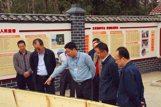 自治区人大常委会副主任王跃飞到桂林市灵川县调研