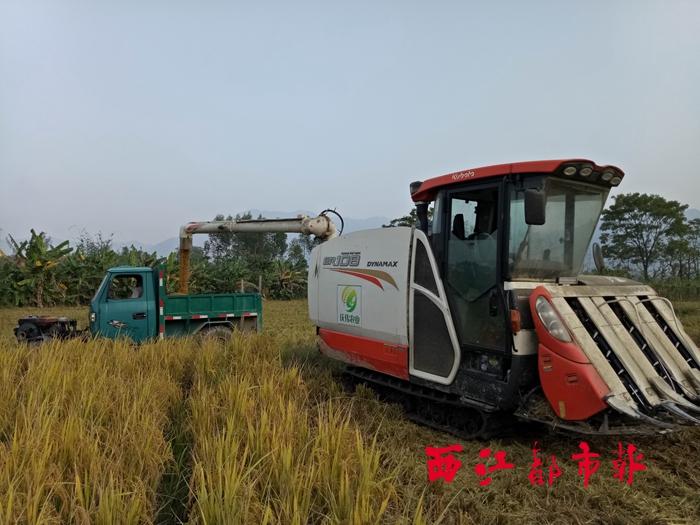 蒙山县秋收工作稳步收尾 机械化收割提高效率