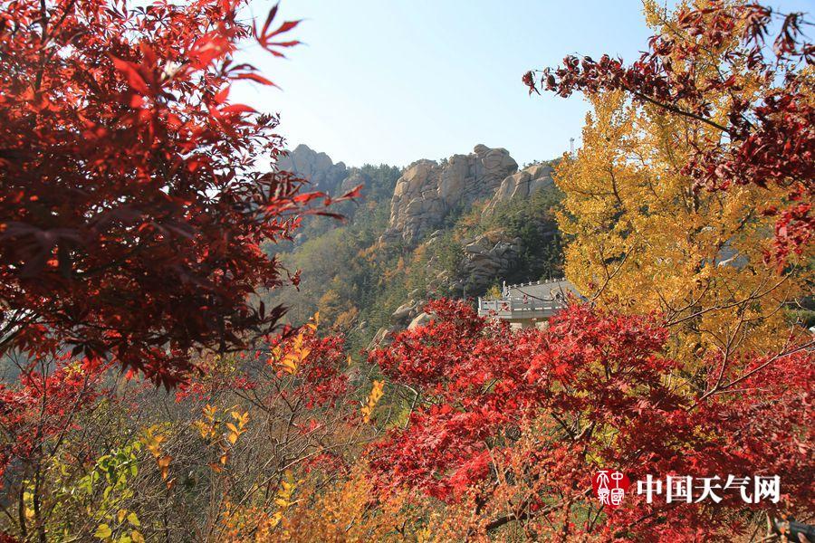青岛崂山:红裳黄衫醉游人