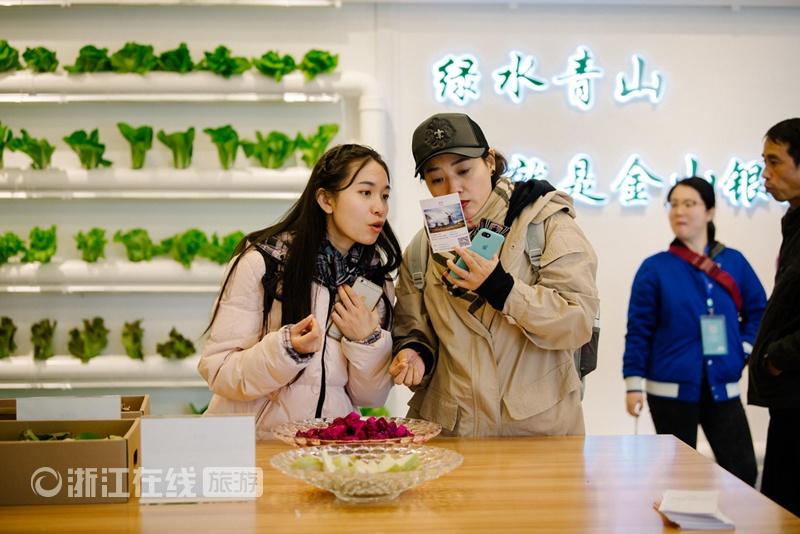 台湾农民创业园-品尝火龙果a.jpg