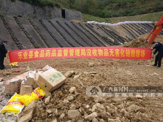 乐业县集中销毁不合格食品药品(图)