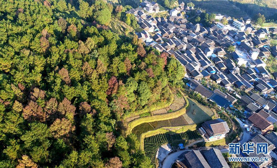 (XHDW)(1)红土地上的美丽乡村