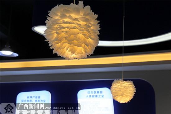 """全国网媒看""""中国羽绒之乡""""港南桥圩发展新格局"""