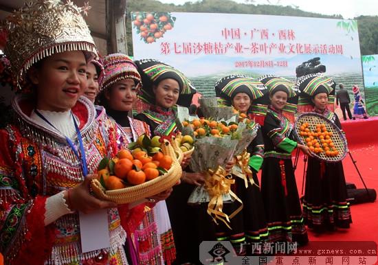 西林第七届沙糖桔、茶叶产业文化展示周启动