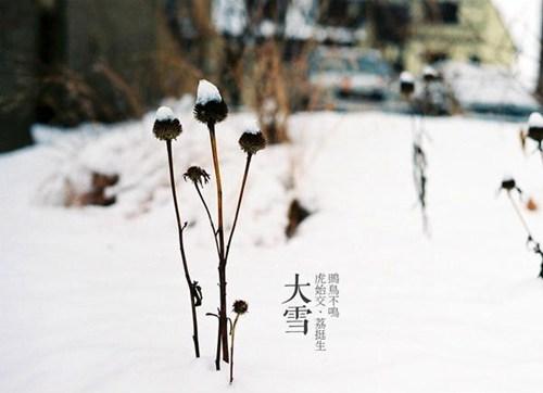 节气大雪:雪纷飞仲冬始 关于大雪的这些你知道多少?