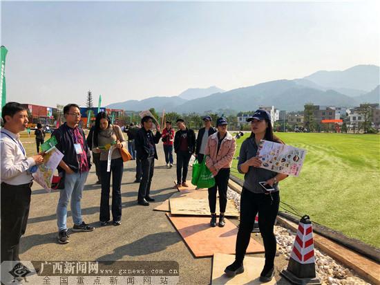 """网眼看贵港:桂平汽车露营基地主打""""体育+旅游"""""""