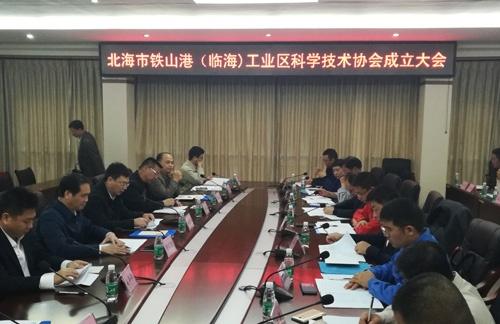 北海铁山港(临海)工业区科协成立