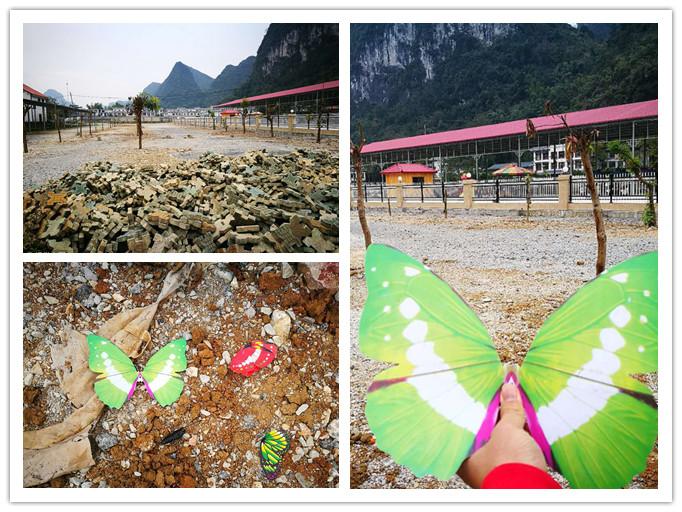 高清:南宁蝴蝶展展出塑料蝴蝶被曝光