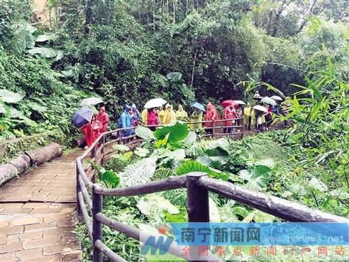 广东旅游部门邀请广西游客新年体验三条精品线路