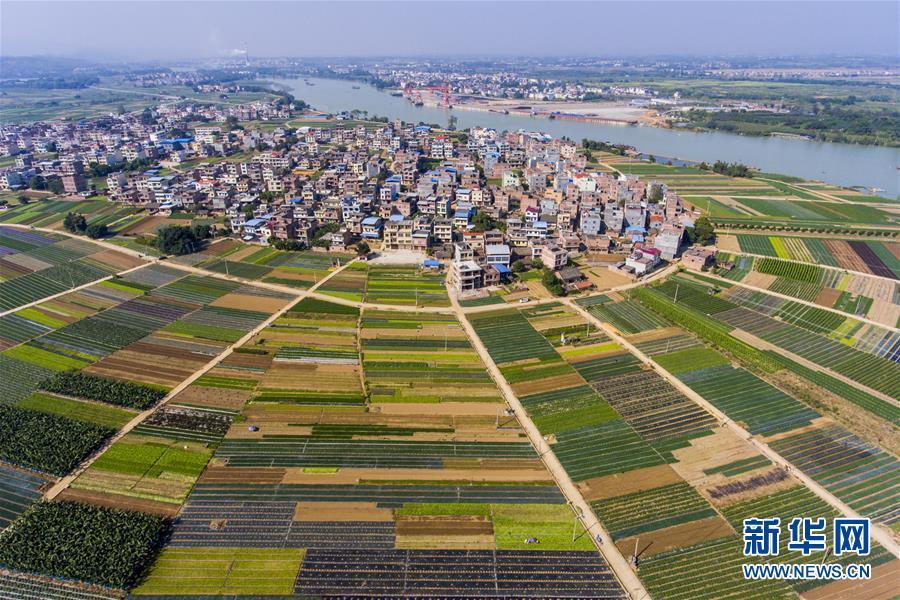#(环境)(1)锦绣田园