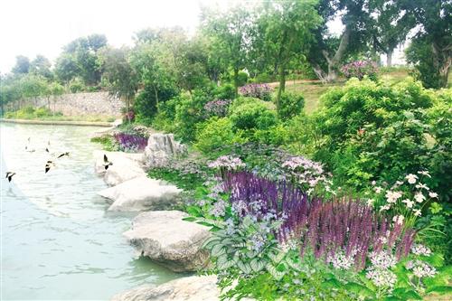 南宁南湖公园将进行水质改善提升  预计明年11月30日竣工