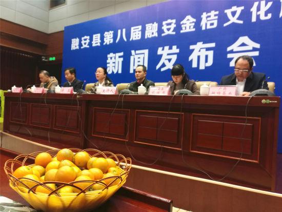 12月21日,广西融安县第八届金桔文化旅游节新闻发布会在柳州市举行。 蒙鸣明 摄
