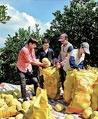 容县:多元扶贫,激发乡村新活力