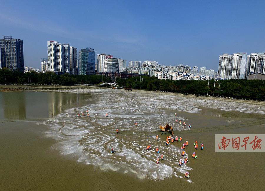 """南宁南湖放水""""消毒"""" 工人对底泥进行消杀作业(图)"""
