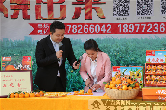 """2017""""我为家乡代言""""活动鹿寨站圆满收官"""