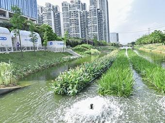 高清组图:南宁基本消除建成区99.4公里黑臭水体