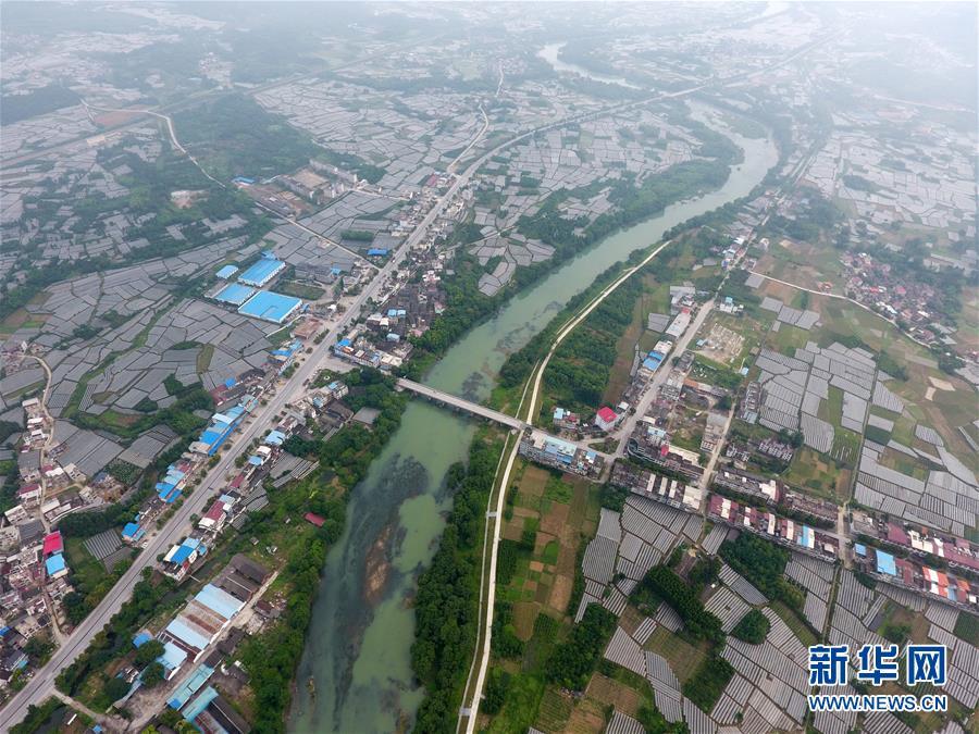 """(新时代新气象新作为)(10)""""飞阅""""广西农村路"""