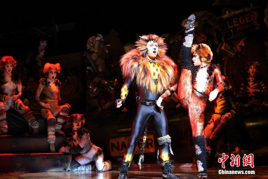 金沙娱乐平台官网:著名音乐剧《猫》在香港上演