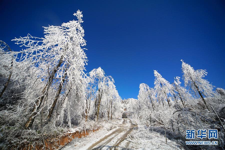 #(环境)(1)湖南湘西:南国之冬如童话世界