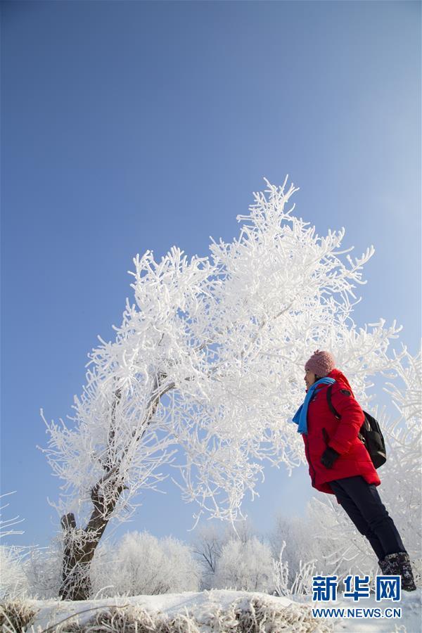 #(环境)(2)松花江畔雾凇景观引客来