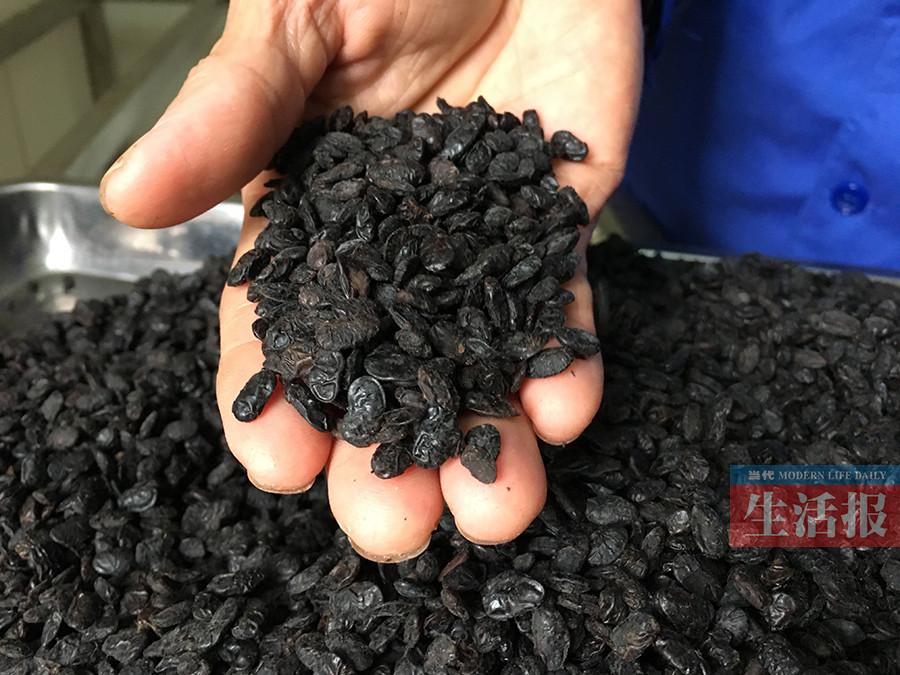 他坚持采用传统工艺制作 千年扬美古镇豆豉香(图)