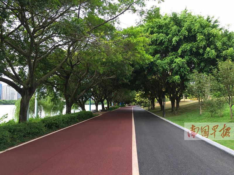 公共建筑,住宅小区,城市道路,中小学校,单位办公区等海绵提升改造项目