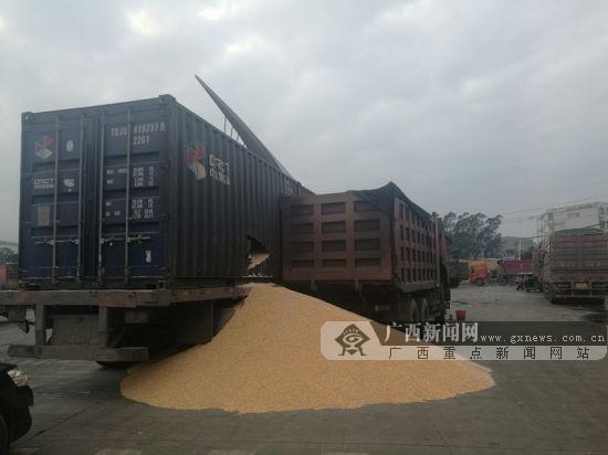 重型半挂牵引车和重型自卸货车相撞 大量玉米撒落