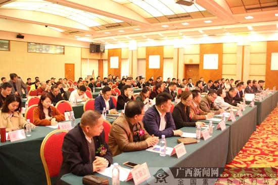 广西—东盟经贸促进会产业文化联合会成立