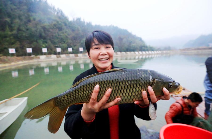 融安发展清水河鱼养殖 促进贫困户增收(组图)