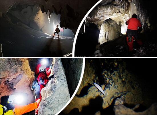 科考队广西河池溶洞探险 发现盲鱼盲虾等罕见生物