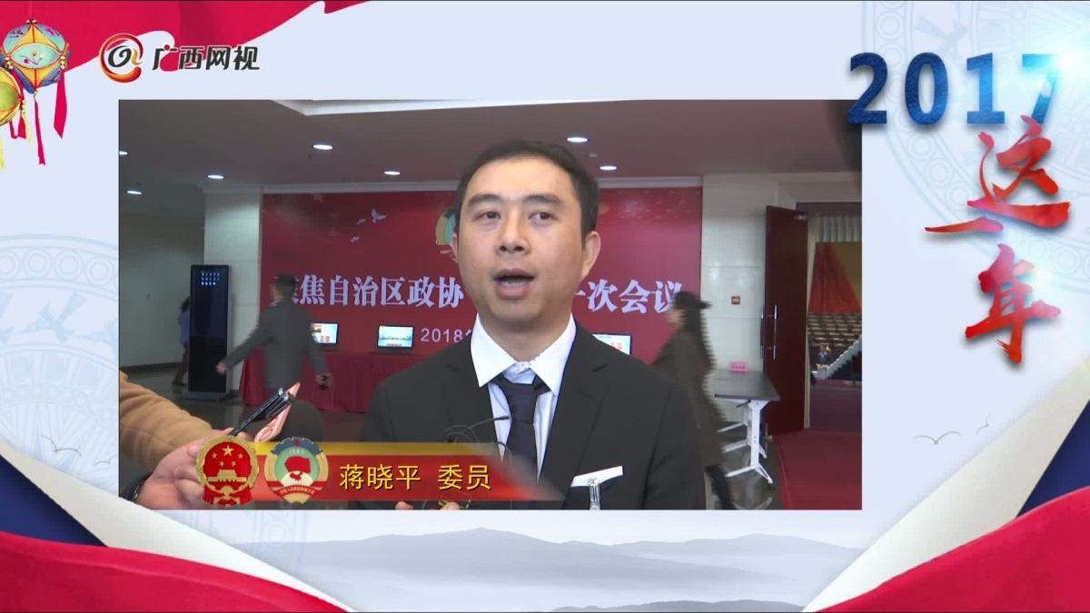 2017这一年――蒋晓平