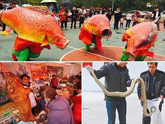 2月13日焦点图:红红火火备年货 欢欢喜喜迎春节