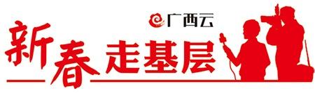 【新春走基层】探访南宁国际园林博览会建设工地