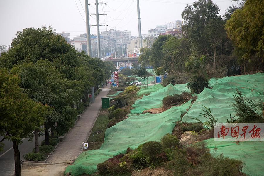 2月14日焦点图:南宁5座立交桥将施工 注意绕行