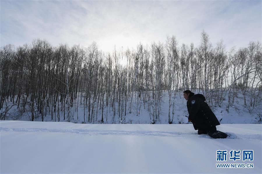 (新春走基层)(5)林海雪原中一个人的除夕
