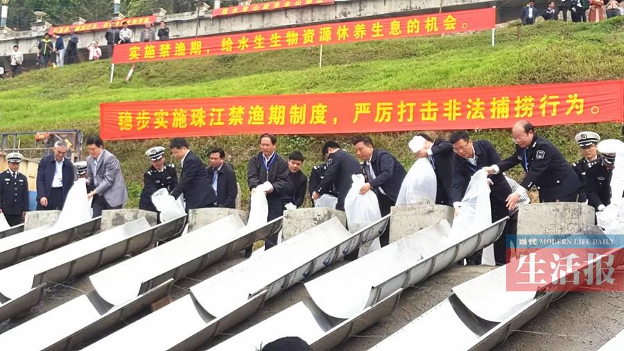 广西史上最严珠江禁渔制度施行 内陆水域全境禁渔