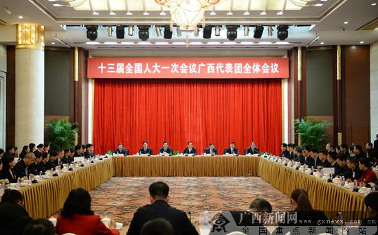 十三届全国人大一次会议广西代表团举行第一次全体会议