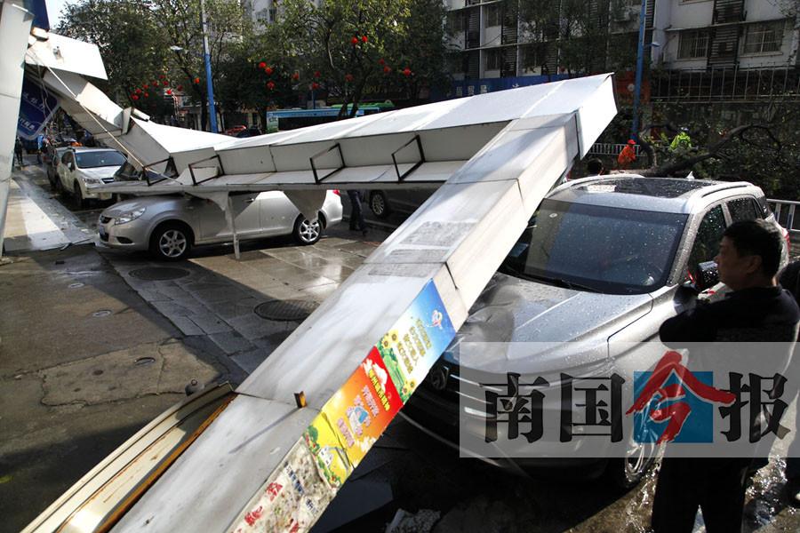 柳州:吹断树木掀翻屋顶 这场狂风暴雨破坏力不小