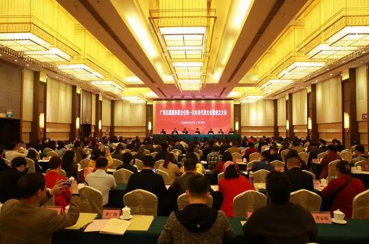 广西志愿服务联合会正式成立
