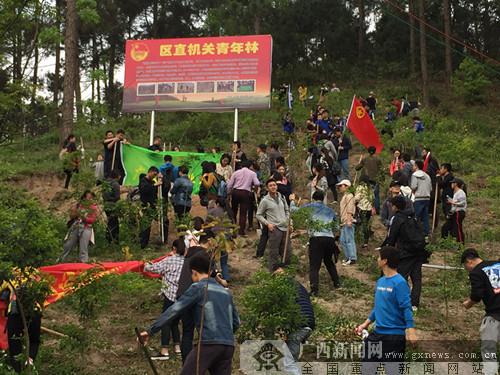 区直机关500多名青年参加义务植树活动
