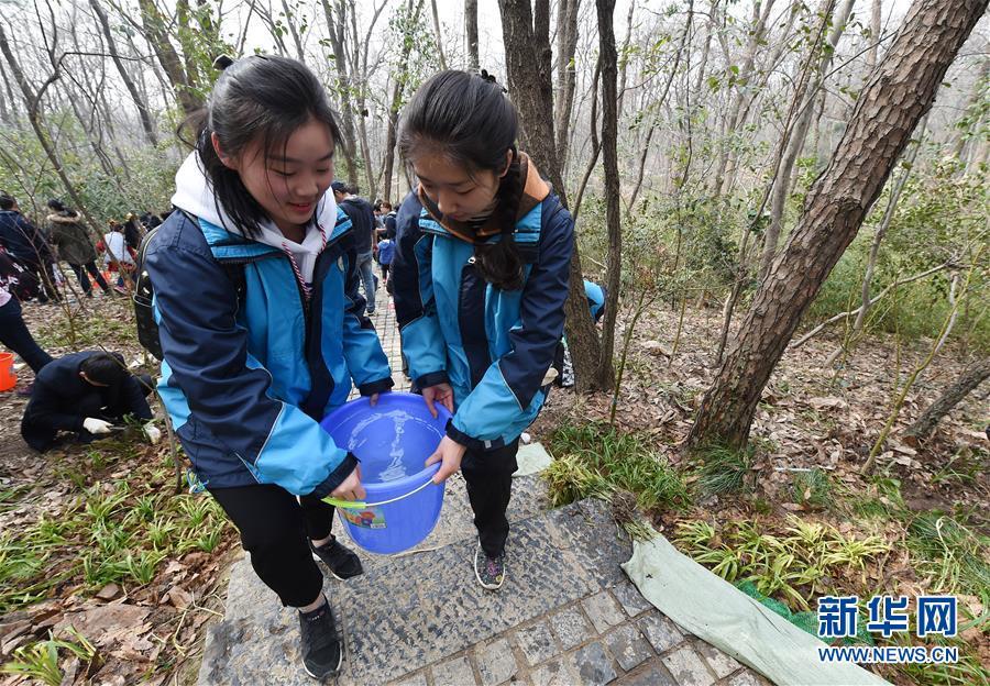(环境)(1)南京开展紫金山登山道沿线生态复绿活动