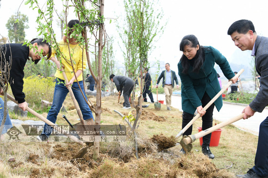 罗城:干部群众义务植树为大地添新绿(图)