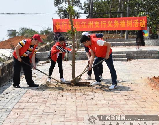 农行崇左江州支行积极开展义务植树活动
