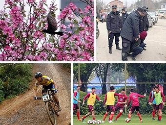 26日焦点图:今年南宁首期电视问政聚焦部门作风