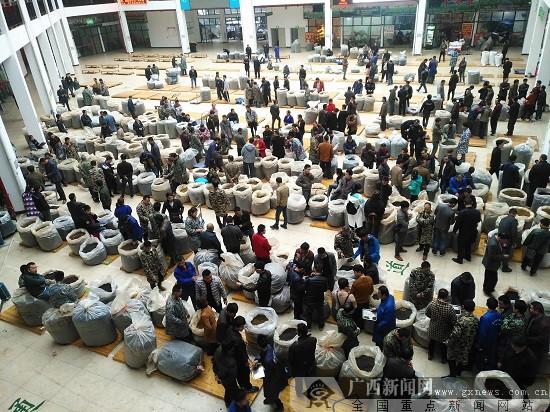 发展特色生态富民产业 三江春茶产销两旺