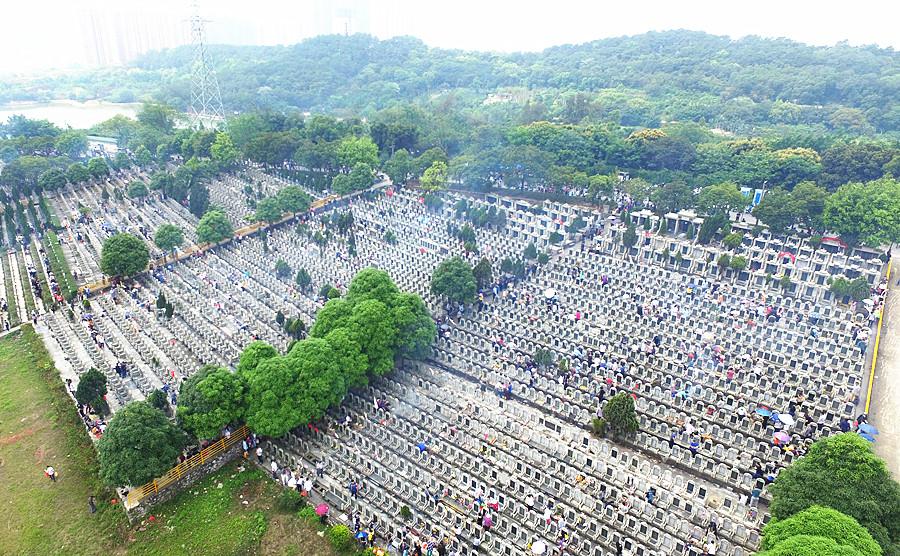 4月6日焦点图:清明假期第一日 广西祭扫大军超百万