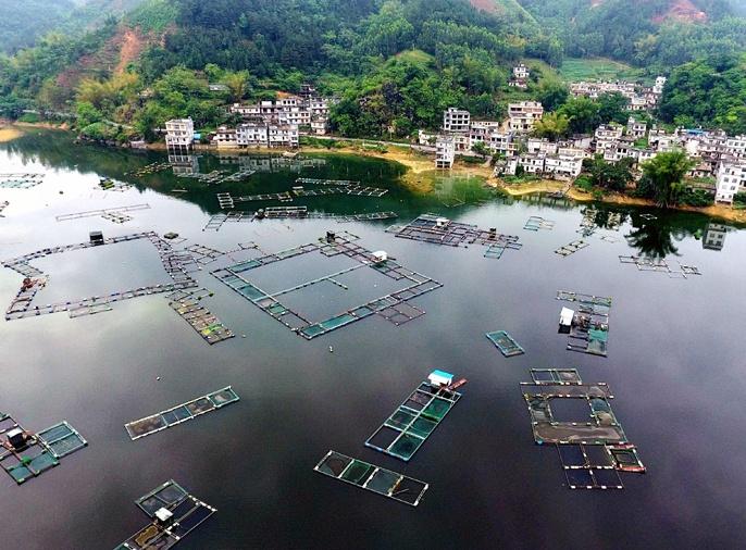 航拍:蔚为壮观 大化北景发展万亩水产养殖
