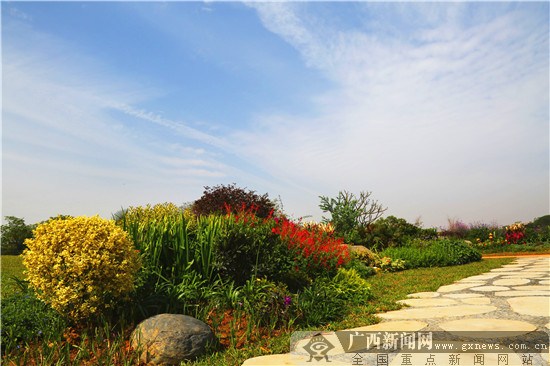 园博园将于8月试运营 八大景观展现原野趣味
